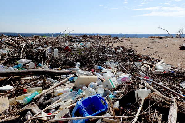 海岸ゴミを調査しよう!調査場所の鈴鹿川河口